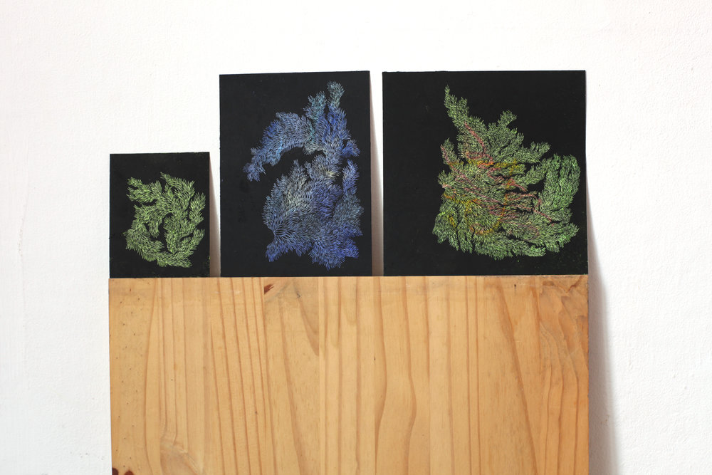Pastels on Paper, Oil on Needle, 2016 Private Collection From left to right: 8.5 x 10,6 cm, 12,8 x 17 cm, 17 x 17 cm