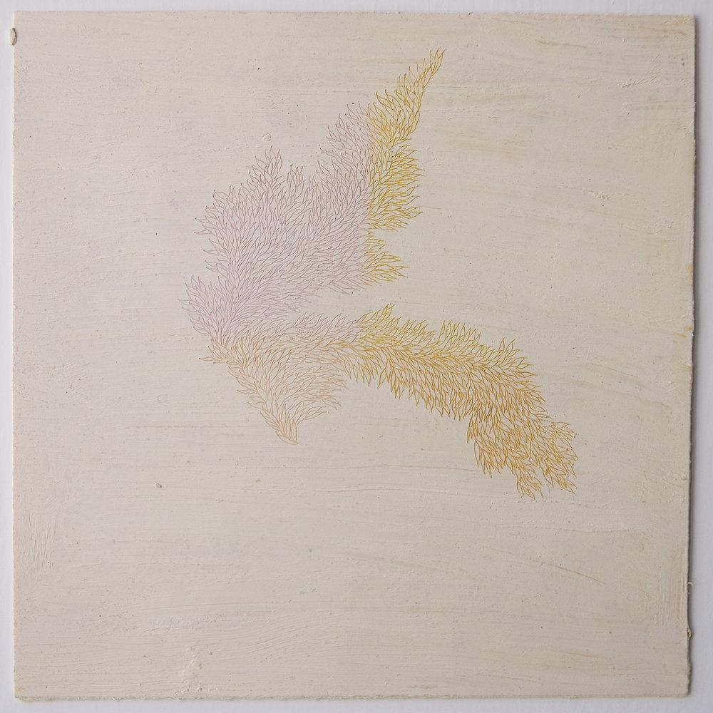Quadrati Magici , 2018 Akademie Schloss Solitude, Stuttgart, DE (12,3 x 12,4 cm)