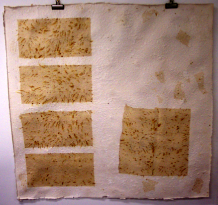 Icarus is Dead. 2003. Handmade paper, chicory, thread. -