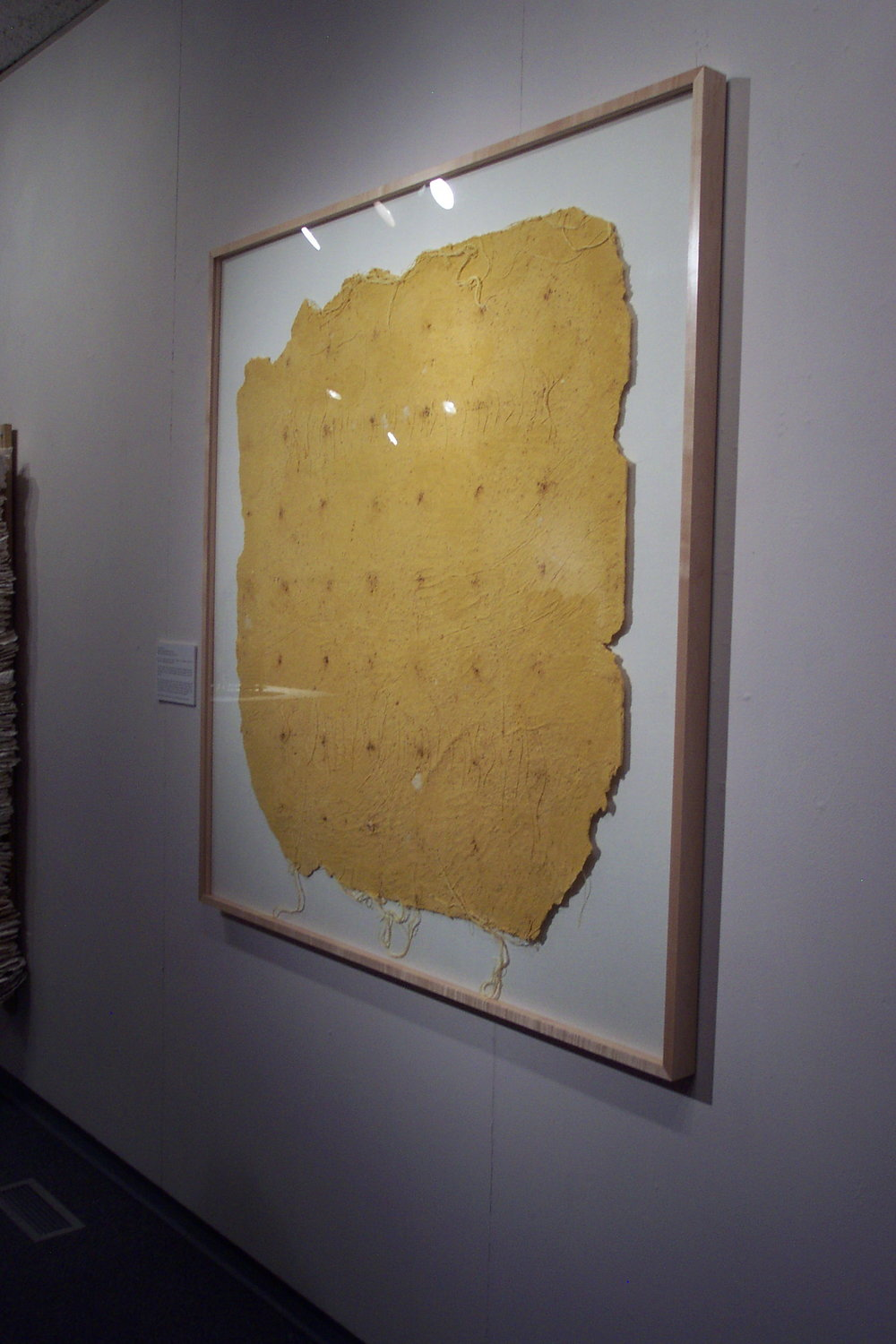 Decay. 2004. Handmade paper, chicory, thread. -