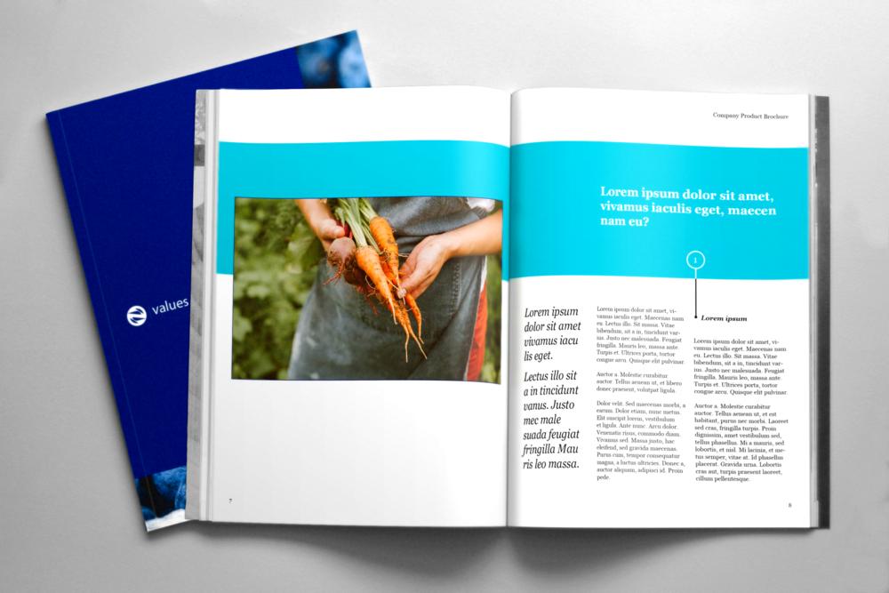 Brochure-4.png