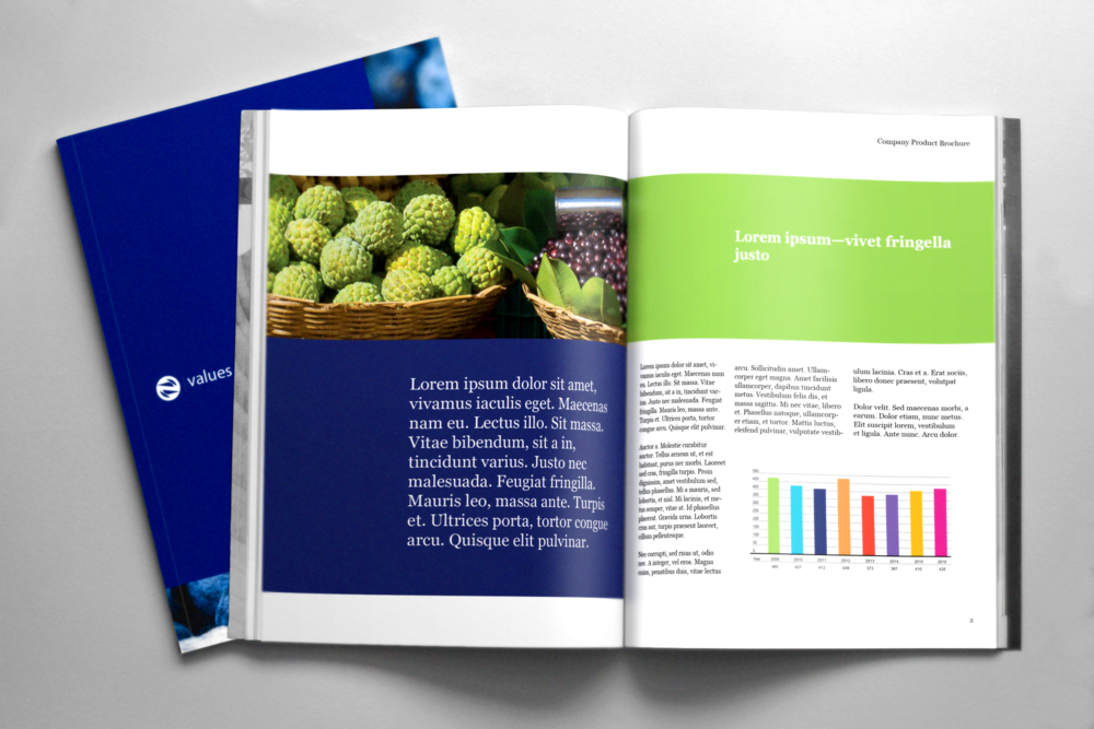 Corporate product brochure