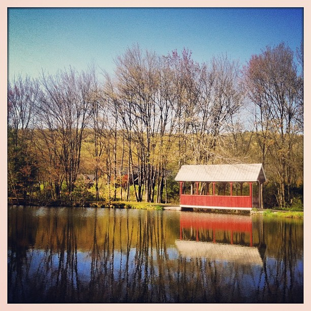 #pennsylvania #woods #country #usa #photography #roadtrip #eastcoast #farm #lake