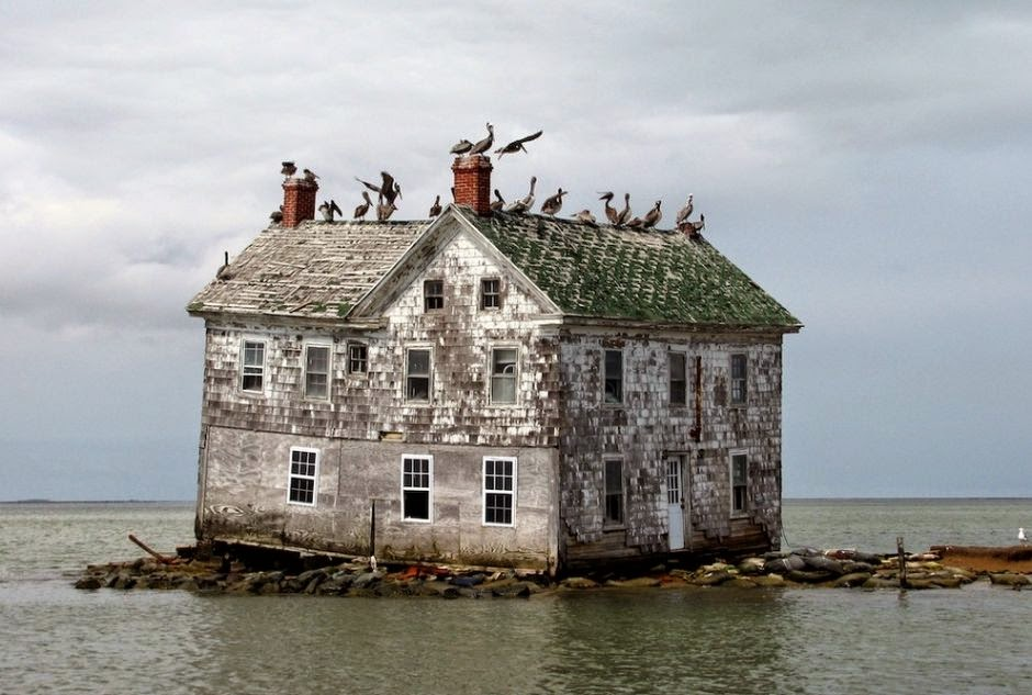 Holland+Island,+Chesapeake+Bay+-+30+Abandoned+Places+that+Look+Truly+Beautiful.jpg
