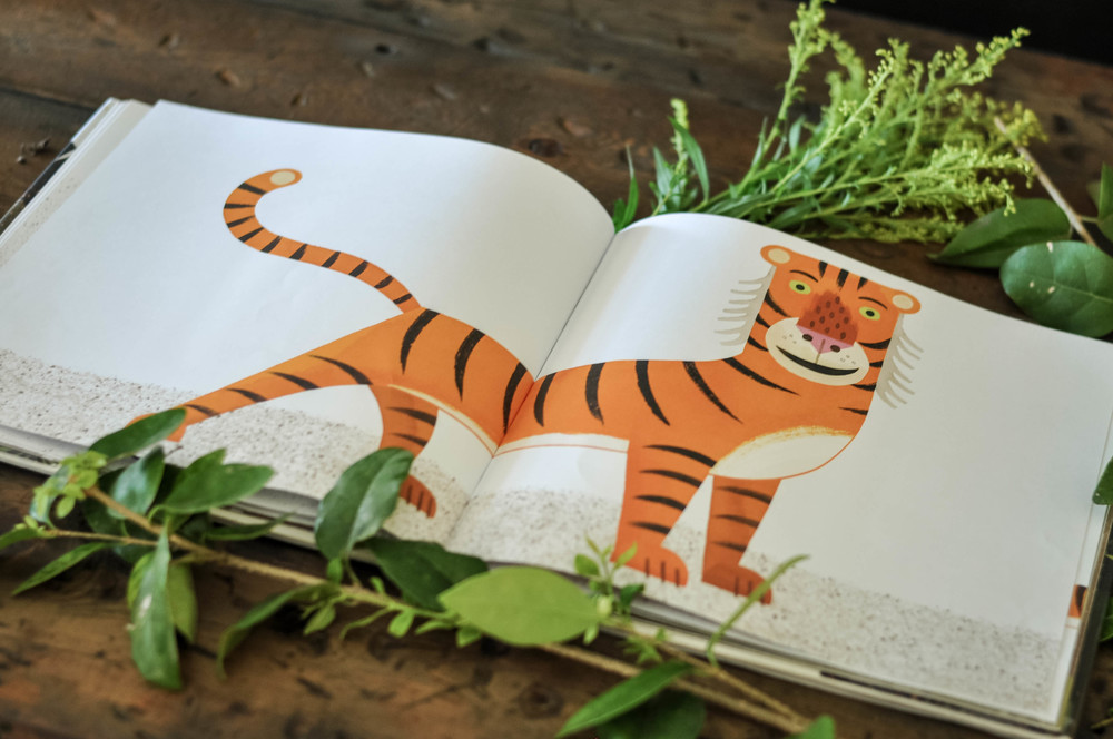 Mr Tiger Goes Wild Book Review