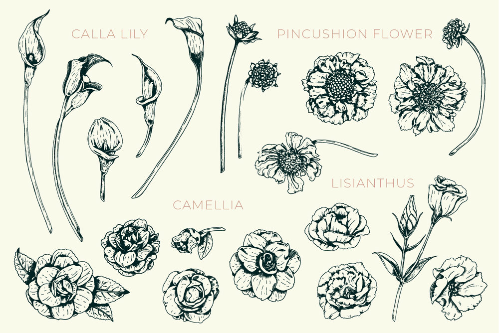 FLORAL stock illustrations
