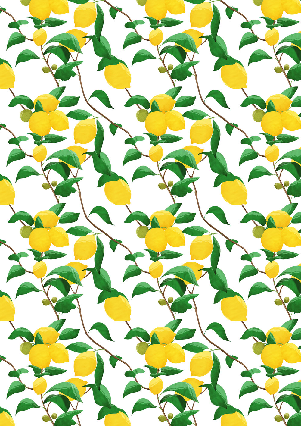 Lemon Pattern Colour.jpg