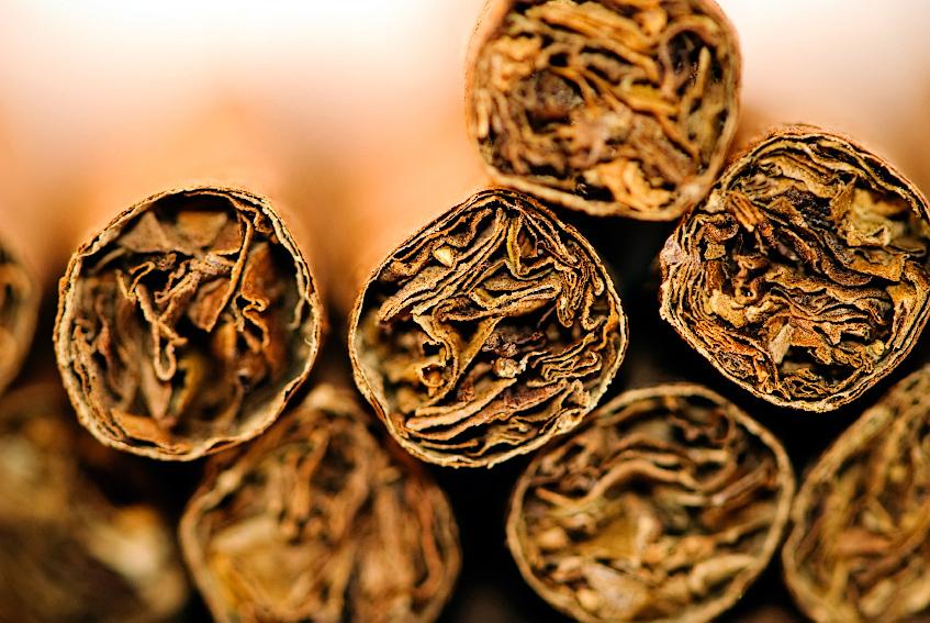 cigarmacro.jpg