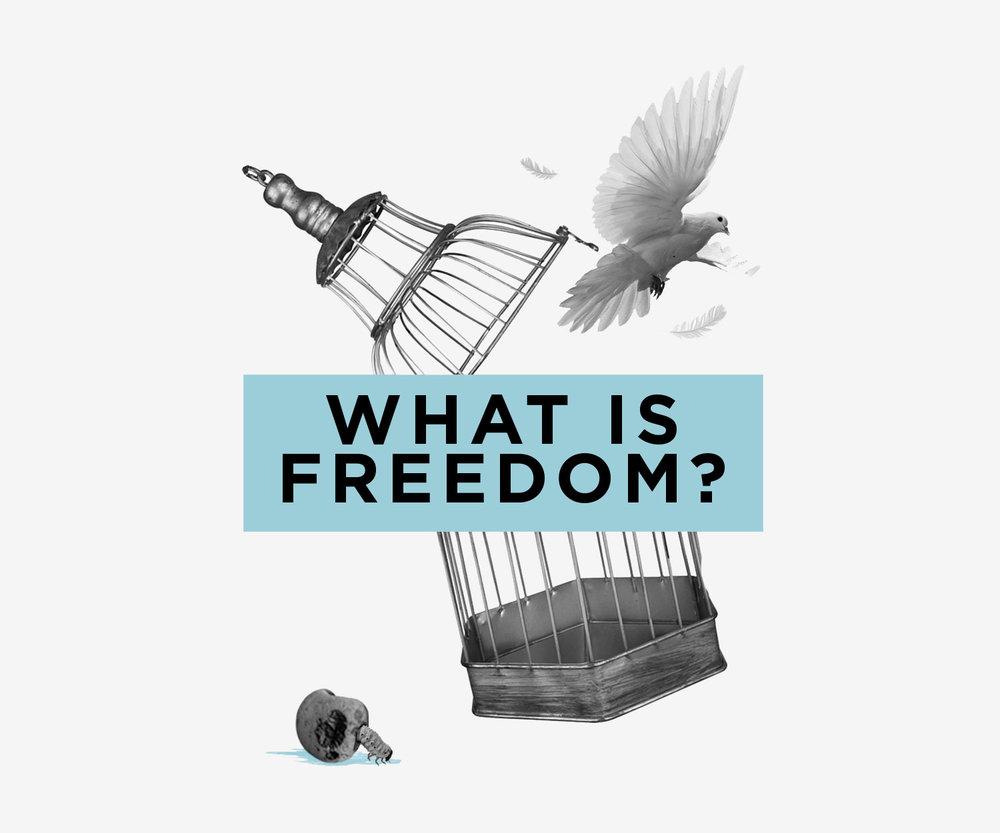 Freedom-grey.jpg