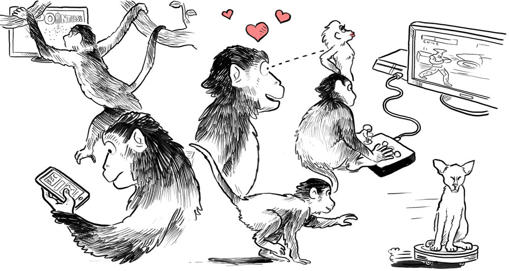 The 'Monkey Mind' is hard to tame! Illustration by Alex Hedworth