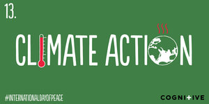 13-CLIMATE-ACTION.jpg
