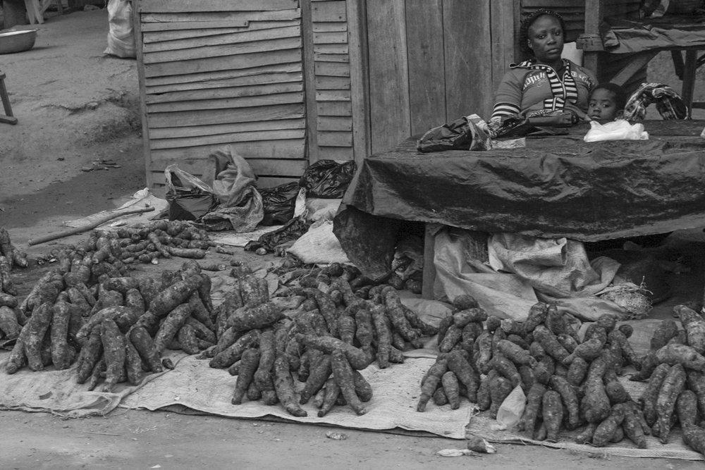 _Côte d'Ivoire_Kew_1168.CR2 copy.jpg