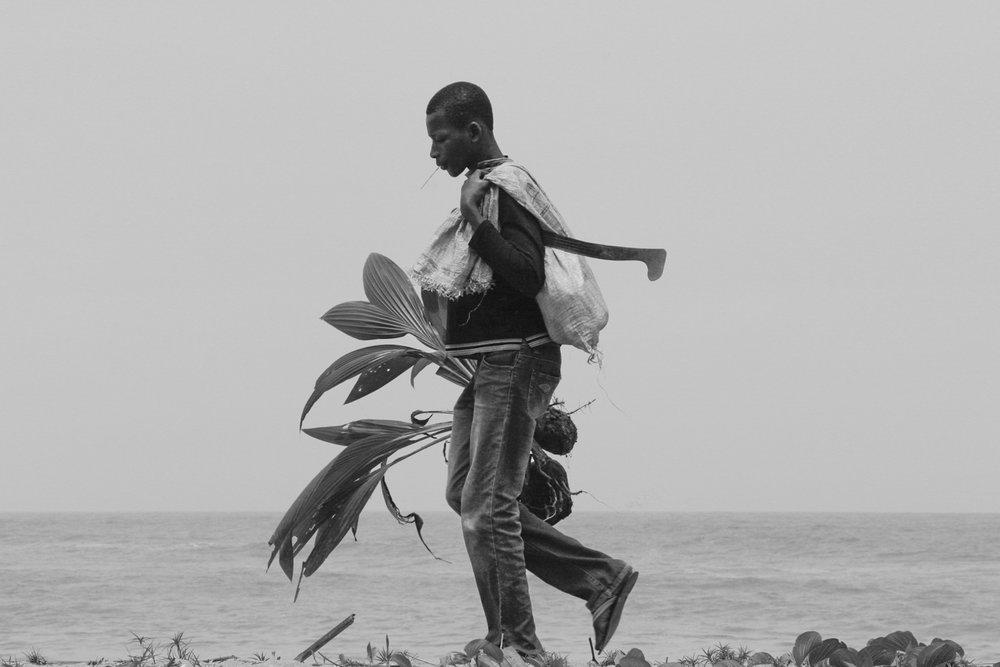 _Côte d'Ivoire_Kew_1581.CR2 copy-2.jpg