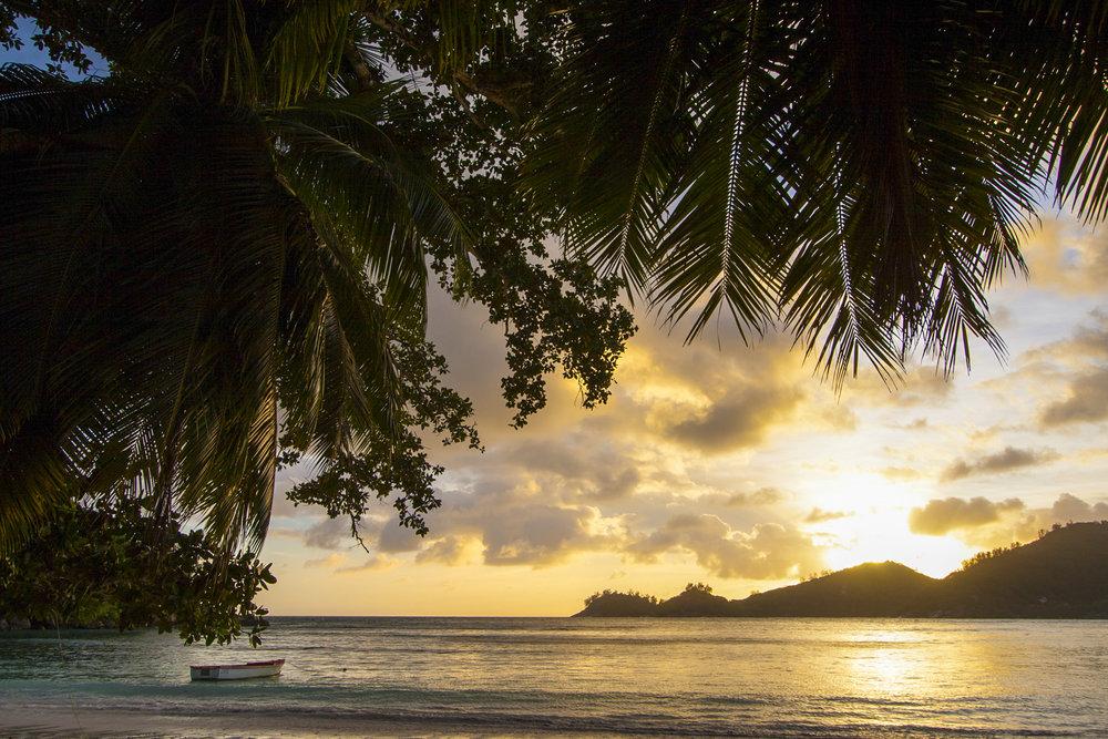 Seychelles - Kew5.jpg