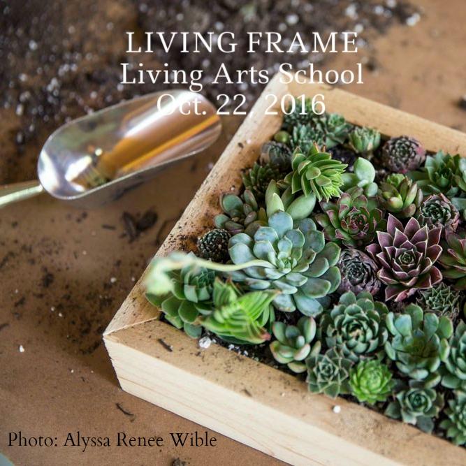 living frame alyssa credit.jpg