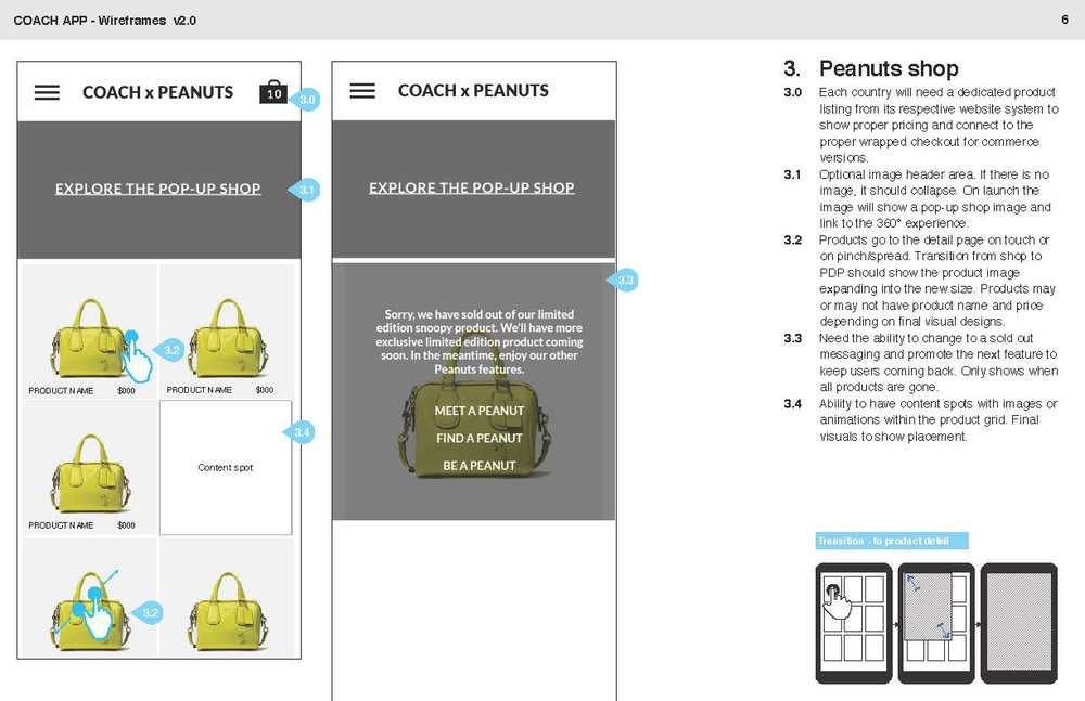 Coach-App-requirements-v2.1_Page_06.jpg