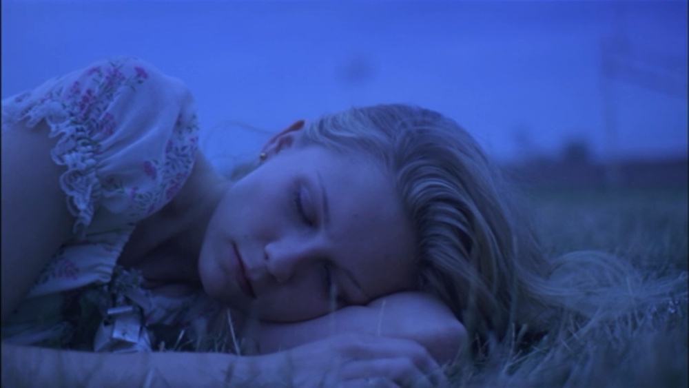 Virgin Suicide, 1999, Sofia Coppola