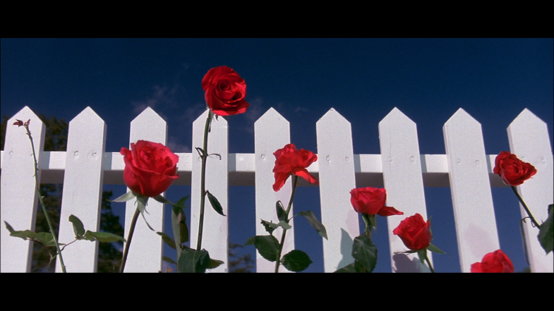 Blue Velvet, 1986, David Lynch
