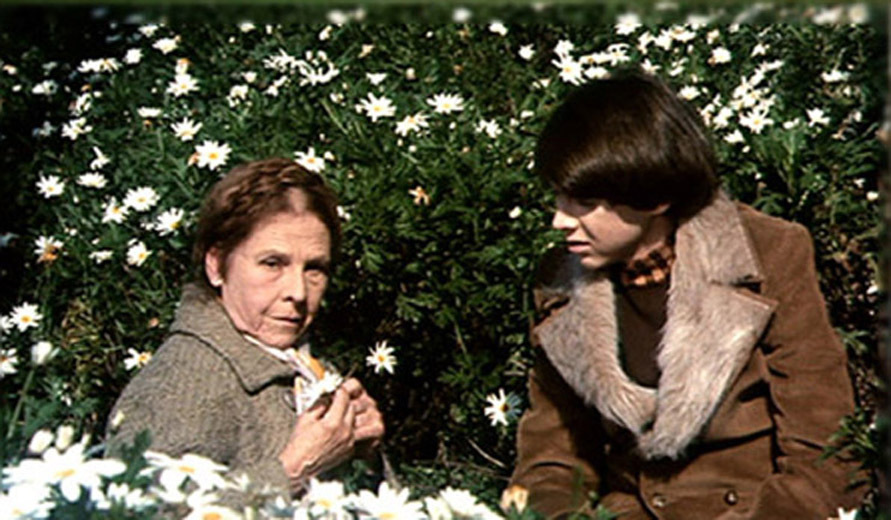 Harold and Maude, 1971, Hal Ashby