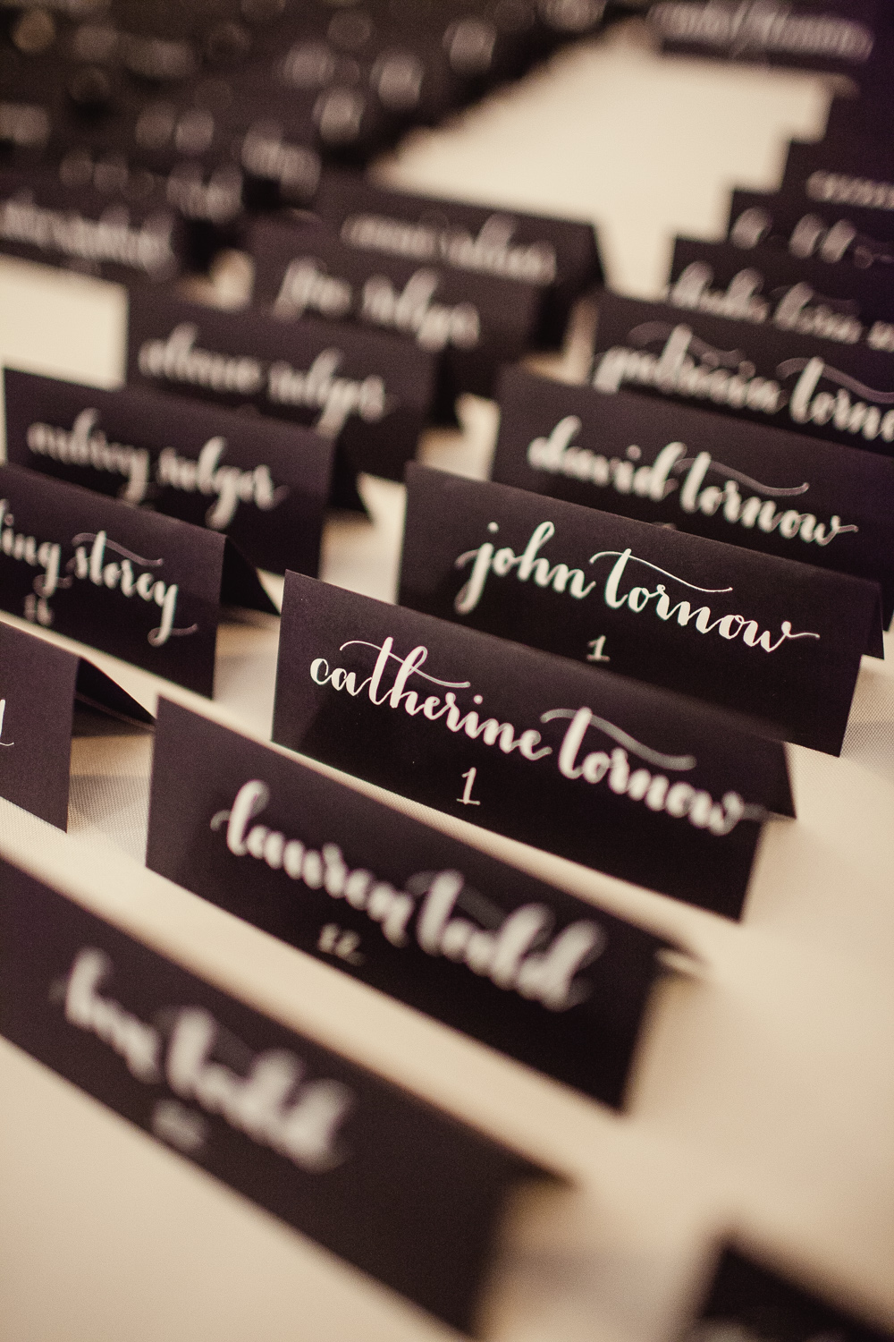 Wedding Place Cards | Shaun Menary Photography | Natalie Grace Calligraphy Co.