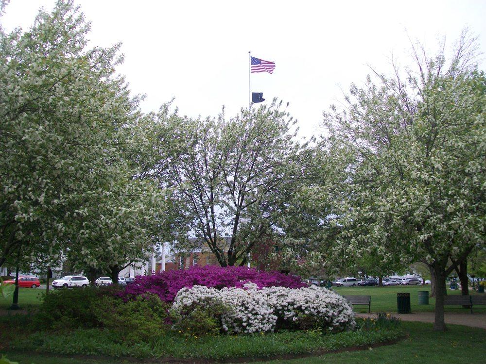 Spring April 2012 3.JPG