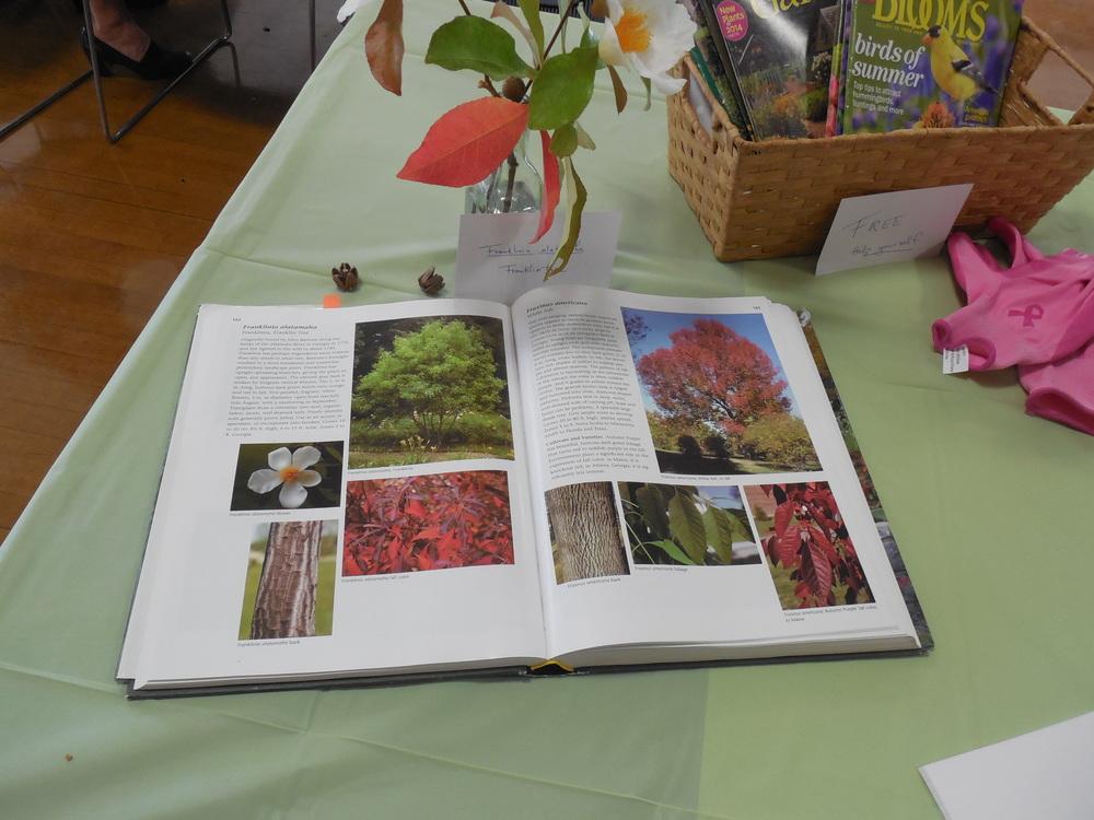 2014 Horticulture display2.JPG