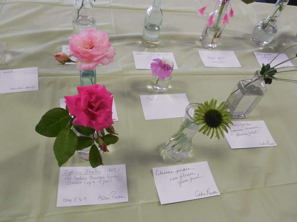 2014 Horticulture display3.JPG