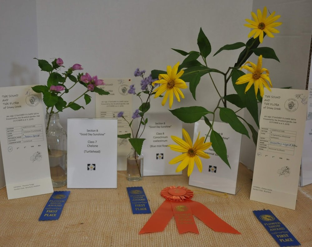 Horticultural Winners