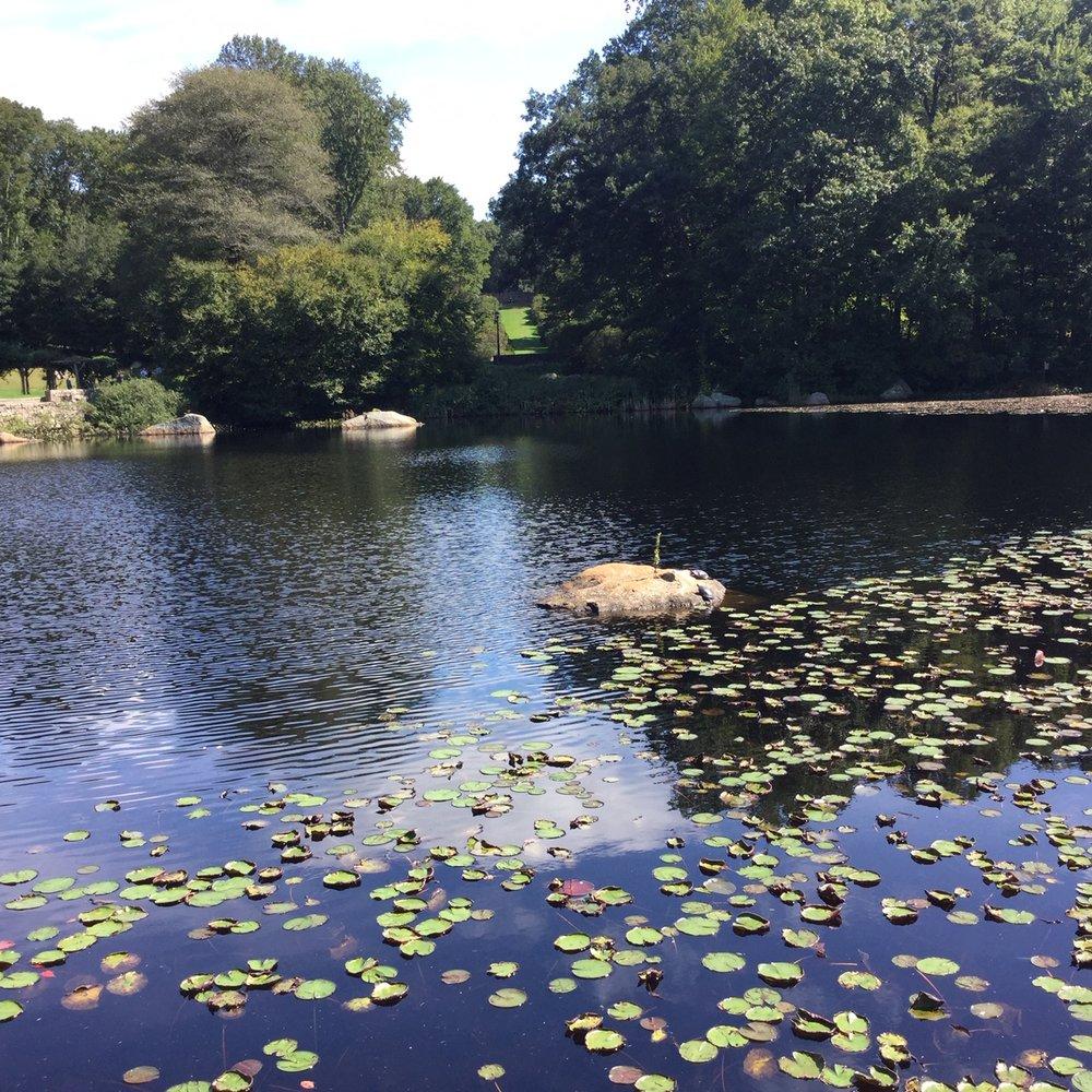 Connecticut College Arboretum