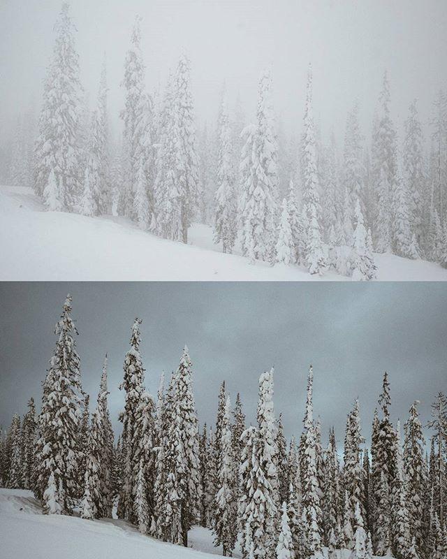 What a difference a few hours makes. . . . . . . {#canada #britishcolumbia #vacation #skiing #getoutstayout #vsco #vscofilm #vscogram #vscocam #bestoftheday #bestofvsco #potd #agameoftones #photooftheday #picoftheday #shotzdelight #thebest_capture #natureporn #landscapelovers #earthoutdoors #neverstopexploring #mothernature #outdoorlife #thegreatoutdoors #instadaily #igdaily #samsung #mountainlife #vzcomood #moodygrams }
