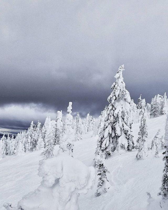 Impending snow. . . . . . . {#canada #britishcolumbia #vacation #skiing #getoutstayout #vsco #vscofilm #vscogram #vscocam #bestoftheday #bestofvsco #potd #agameoftones #photooftheday #picoftheday #shotzdelight #thebest_capture #natureporn #landscapelovers #earthoutdoors #neverstopexploring #mothernature #outdoorlife #thegreatoutdoors #instadaily #igdaily #samsung #mountainlife #snow #moodygrams }