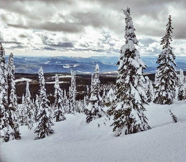 Bye, Canada! Thanks for the views. . . . . . . {#canada #britishcolumbia #vacation #skiing #getoutstayout #vsco #vscofilm #vscogram #vscocam #bestoftheday #bestofvsco #potd #agameoftones #photooftheday #picoftheday #shotzdelight #thebest_capture #natureporn #landscapelovers #earthoutdoors #neverstopexploring #mothernature #outdoorlife #thegreatoutdoors #instadaily #igdaily #samsung #mountainlife #snow #moodygrams }