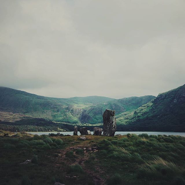 Soon, we'll be here. Soon it'll be better, quieter, kinder. Soon we won't have to fight so hard. Just us, the sky, the whisper of breeze through the tall grasses. . . . . . . . {#ireland #irish #mountains #getoutside #getoutstayout #vsco #vscofilm #vscogram #vscocam #bestoftheday #bestofvsco #potd #photography #photooftheday #picoftheday #wilderness #nature #natureporn #landscapelovers #landscape #neverstopexploring #mothernature #outdoorlife #thegreatoutdoors #instadaily #igdaily #dingle #moodygrams #green #mountainlife}