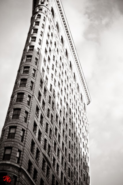 Flatiron Building, Haley Carpenter Photography, NYC