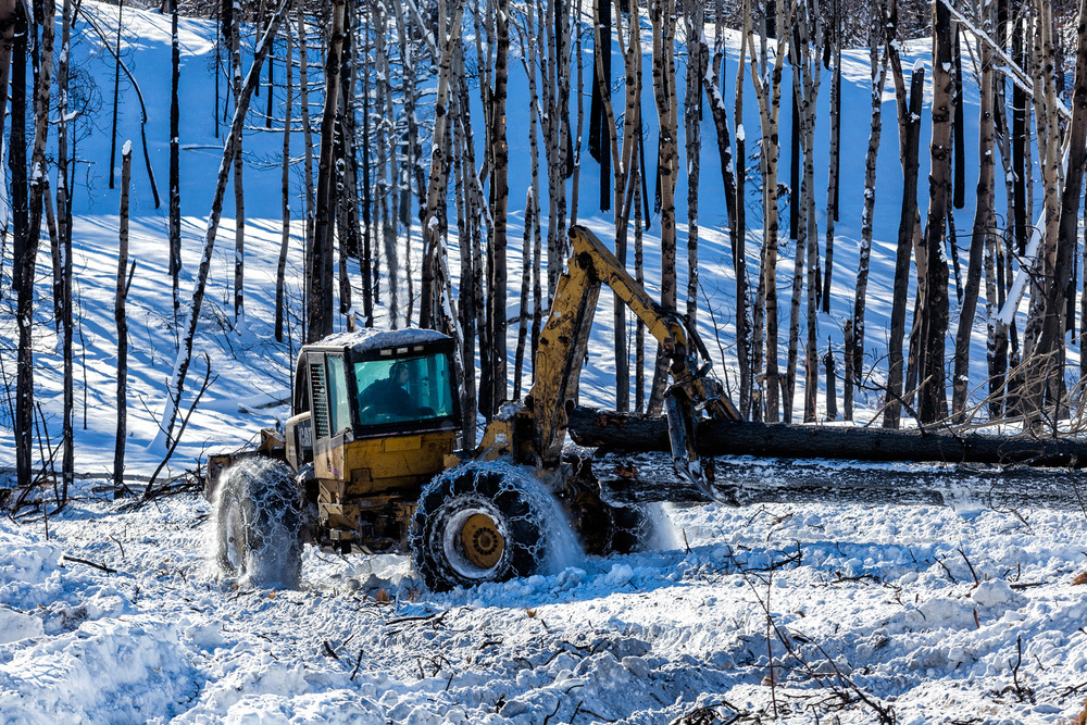 Conservation: A salvage logging operation after a wildfire near Loup Loup Pass, Washington