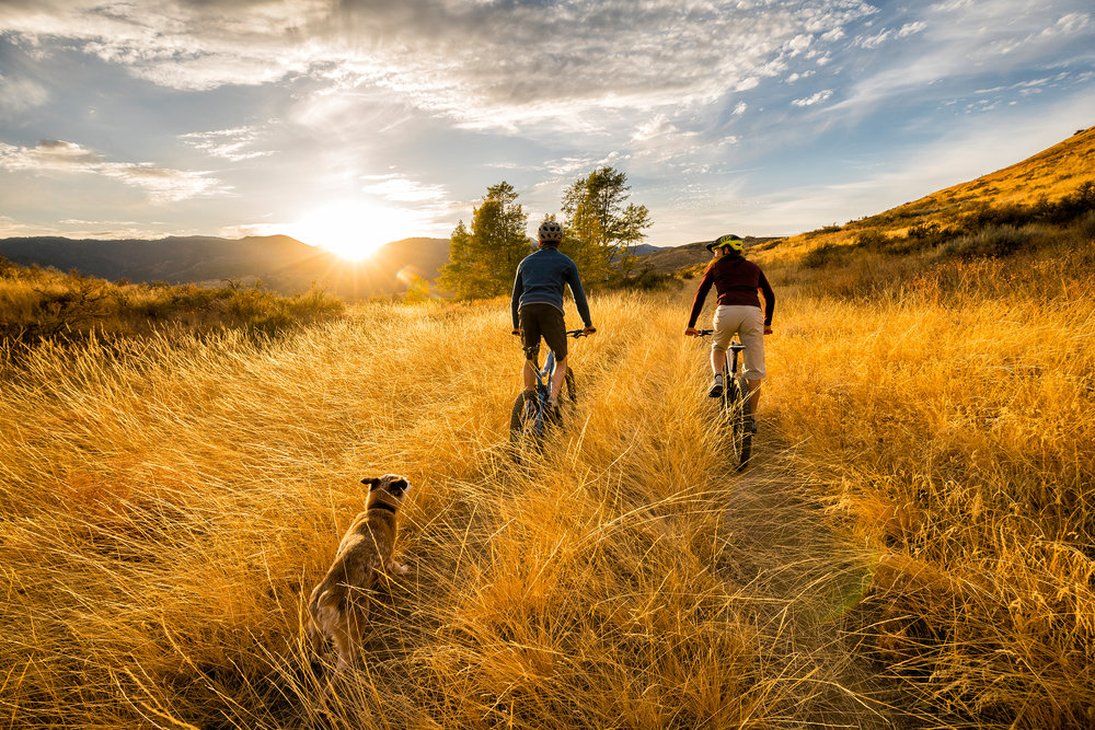 Adventure: A young couple mountain biking with their dog in autumn in the Methow Valley, Washington