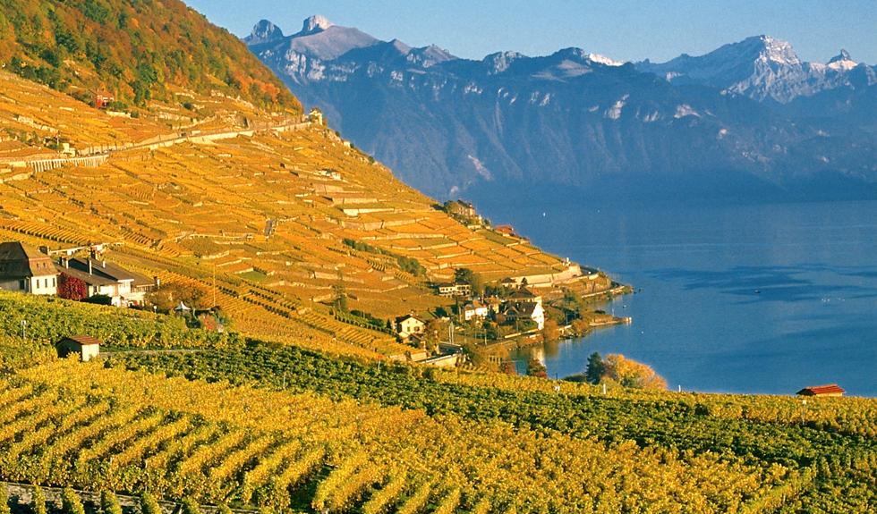 The Lavuax Riviera in autumn (© Montreux-Vevey Tourisme)