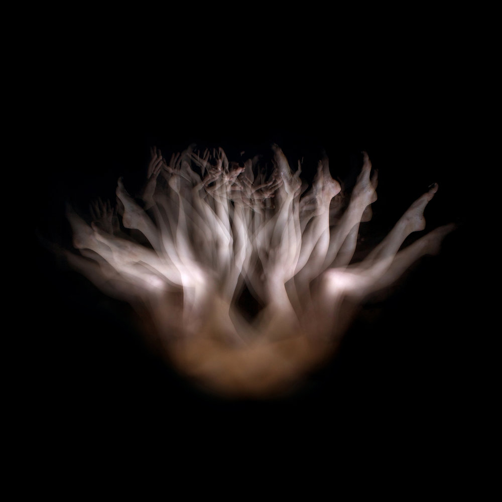 Firmament's Blossom , 2011.   C-print. 40 x 40 inches (101.6 x 101.6 cm) Edition of 5, 2 APs © Lia Chavez
