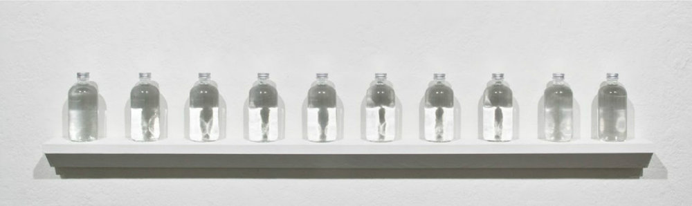 PLATE 26. Lia Chavez.  True Light: Material Dispersion  , 2012. Purified spring water, glass bottles, aluminum caps.