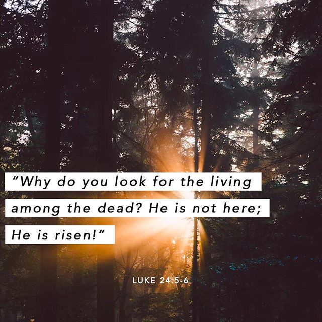 He is risen! May the strength of Jesus, who overcame death because of his great love of you, abide in you today. Happy Easter!