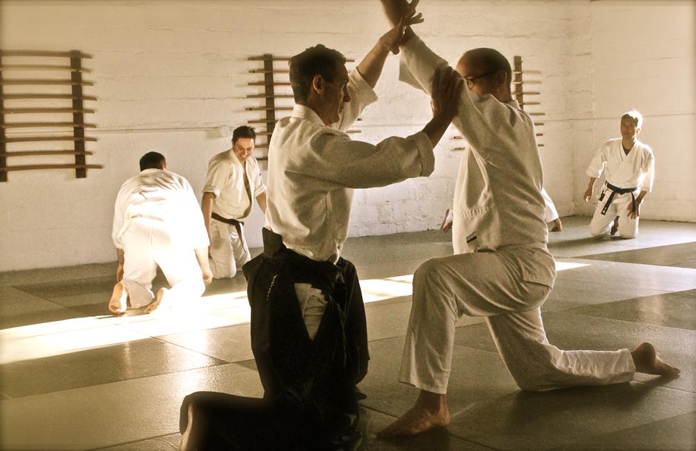 aikido (137).jpg