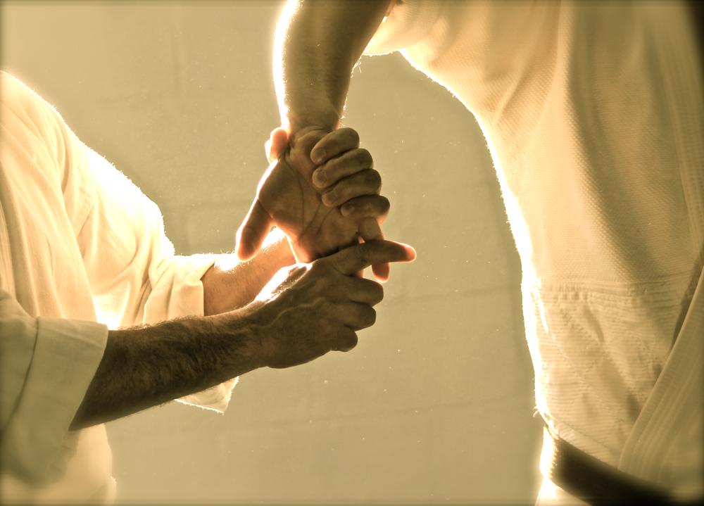 aikido (262).jpg