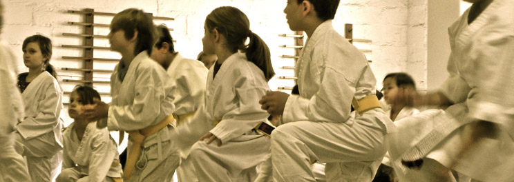 Aikido's focus on harmonious conflict resolution often appeals to parents.