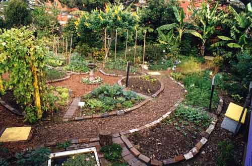 Custom Services Home Organic Gardening Service