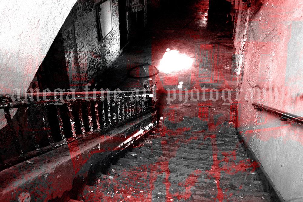 Forgotten Cellar.jpg