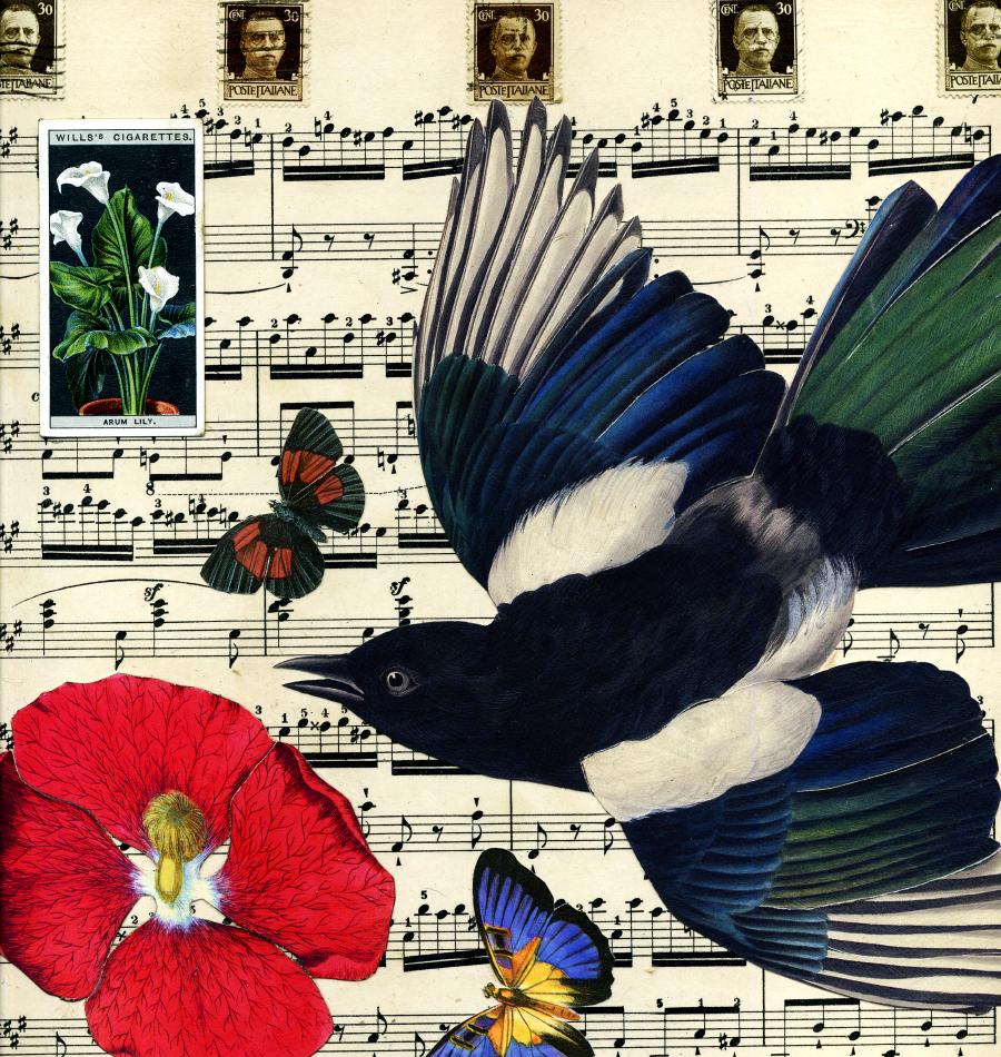 birds blosomms butterflies 3 PS.jpg