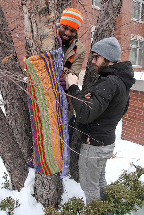 David Gear and Jason Brown, co-chairs of the Evanston Public Art Committee, stitch pieces of wool fabric around a tree outside of Evanston's public library on Feb. 8, 2014, Evanston, Ill. Gear and Brown stitched the fabric around the trees while other people knitted indoors. (ANNE EVANS, MEDILL)