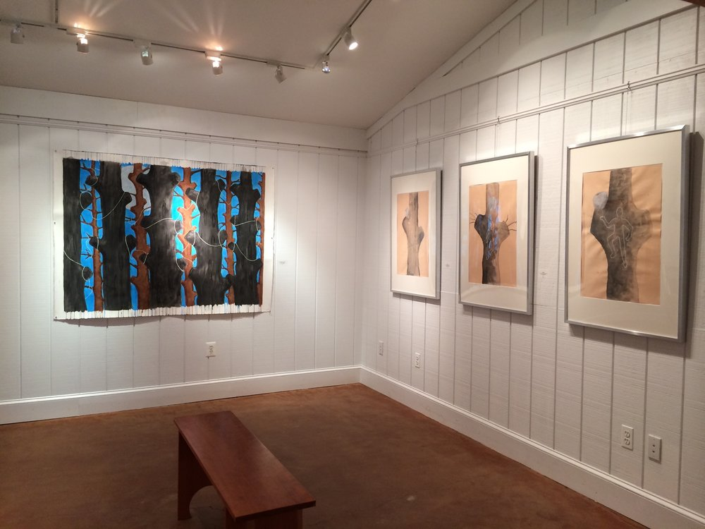 2015 middle street gallery, solo show.jpg
