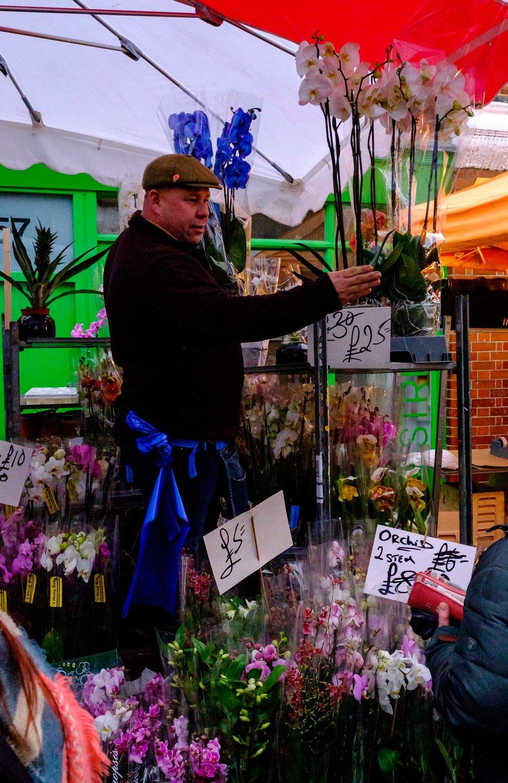 2017_02_14_ben_kepka_cultured_kiwi_Flower_Market-007.jpg