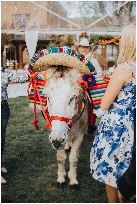 Santa Fe Wedding_2017.jpg